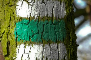 Po zelené na Oblík