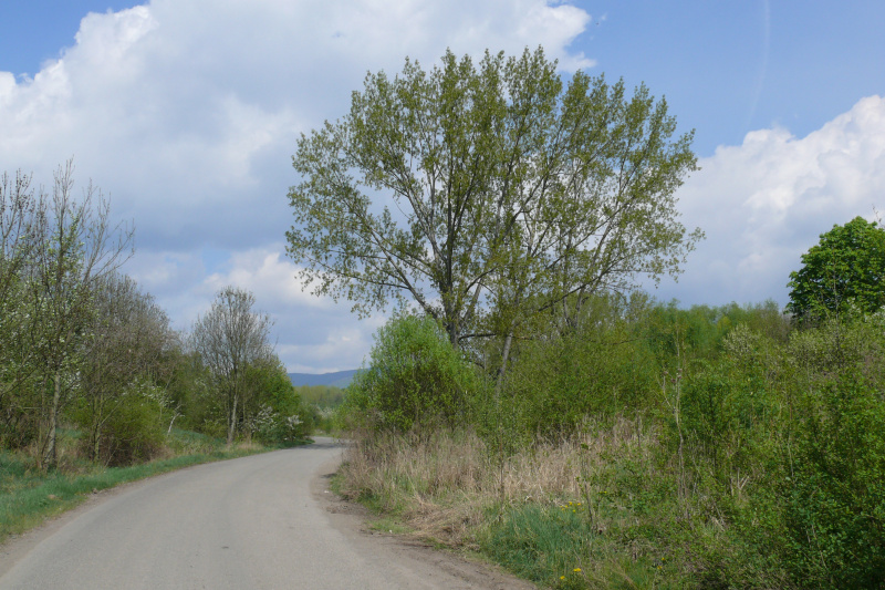 Silnice na Lom