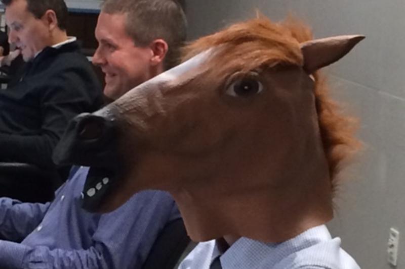 Kuba - kůň :-)